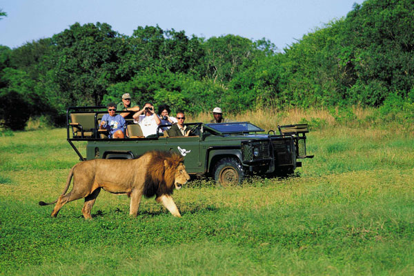 Tourism Industry in Africa: Attracting Increasing Number of Tourists from the Middle East