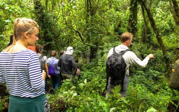 Ecotourism in Uganda