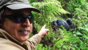 mountain gorillas uganda